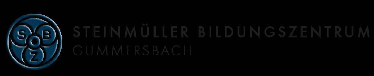 Logo - Bildungszentrum Gummersbach
